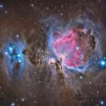 Звёздные ясли в туманности Ориона