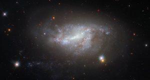 Космический телескоп Хаббла смотрит на NGC 5917