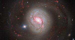 Очень большой телескоп запечатлел галактику Messier 77