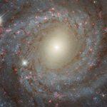 Хаббл обнаружил странные звёзды в галактике NGC 3344
